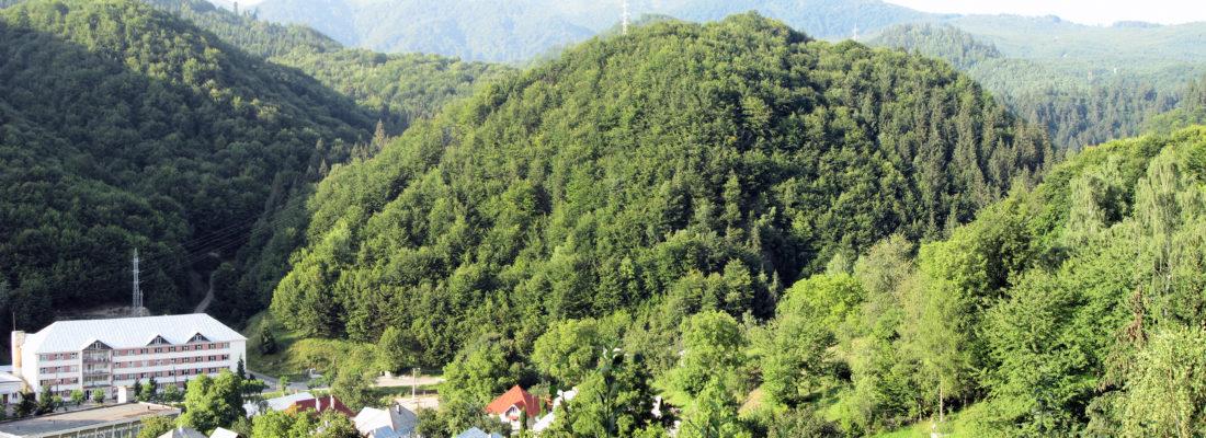 Cavnic - OrașulCavnic.ro
